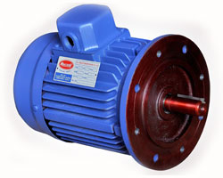 Electric motor in ahmedabad