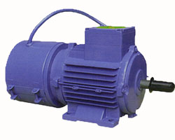 Vibration motor in india